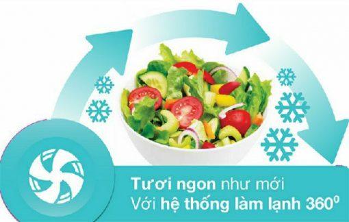 Tủ lạnh Electrolux ETB3700H-A 1