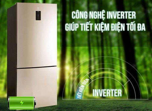Tủ lạnh EBE4502GA 3